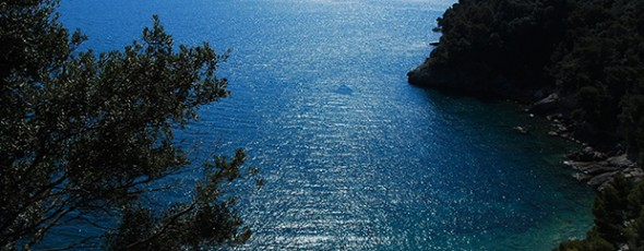 Case di Lusso search a villa in Liguria on the Riviera di Levante close to the sea